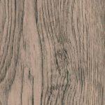 Nut oak plum 2445